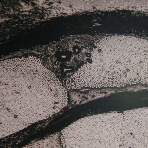 Endommagement matriciel dans des matériaux composites à renforts continus
