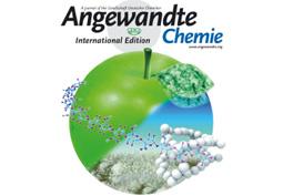 MINES ParisTech et l'EMPA distingués par le prestigieux Angewandte Chemie