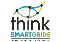 Georges Kariniotakis nommé au Conseil Scientifique de Think Smartgrids France