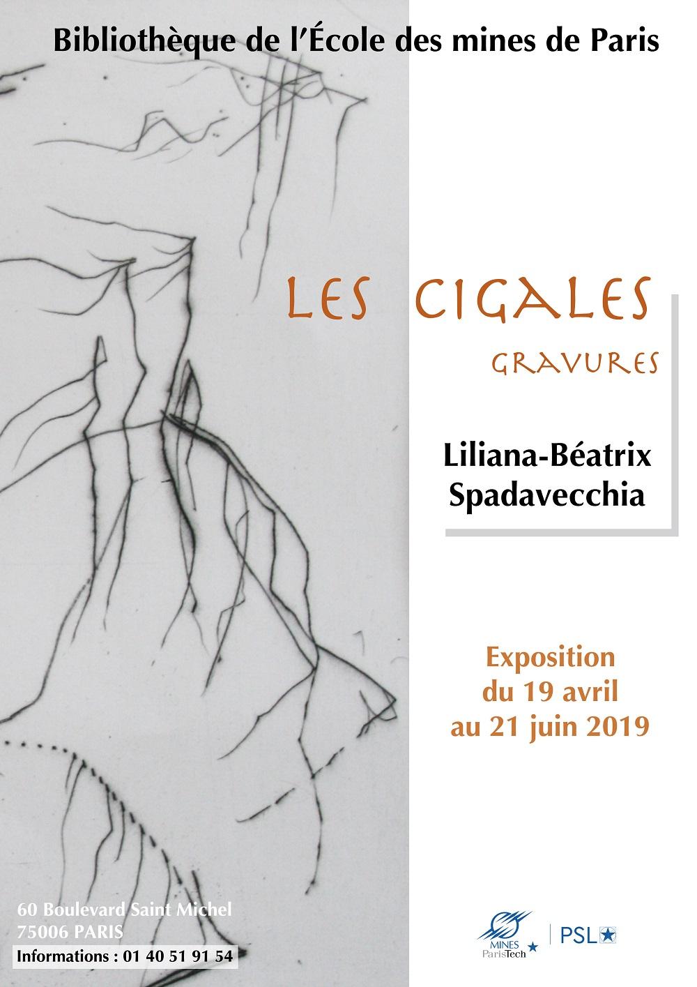 Les Cigales - Exposition de Liliana-Béatrix Spadavecchia